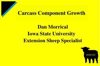 Dan Morrical Iowa State University   Extension Sheep Specialist