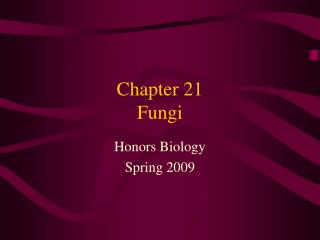 Chapter 21 Fungi