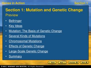 Section 1: Mutation and Genetic Change