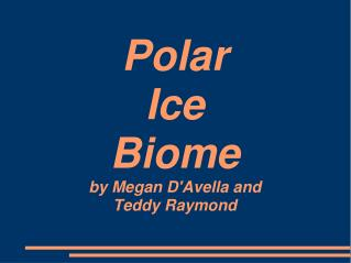 Polar Ice Biome by Megan DAvella and Teddy Raymond