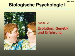 Kapitel 2 Evolution, Genetik und Erfahrung
