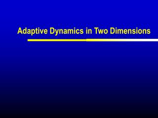 Adaptive Dynamics in Two Dimensions
