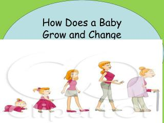 How Does a Baby  Grow and Change