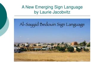 A New Emerging Sign Language by Laurie Jacobvitz