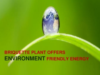 Briquette Plant Offers Environment Friendly Energy
