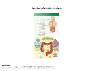 Intestinal colonization resistance