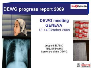 DEWG progress report 2009