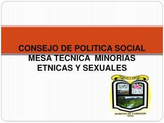 CONSEJO DE POLITICA SOCIAL  MESA TECNICA  MINORIAS ETNICAS Y SEXUALES