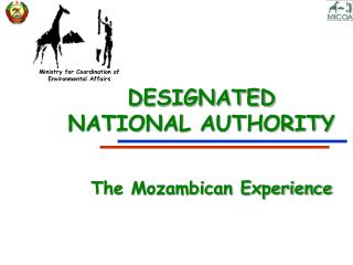 DESIGNATED  NATIONAL AUTHORITY