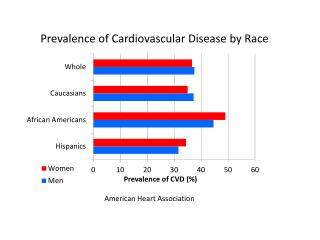 Prevalence of Cardiovascular Disease by Race