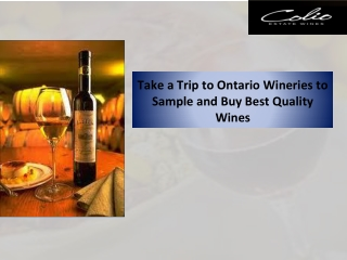 Take a Trip to Ontario Wineries to Sample and Buy Best Quality Wines