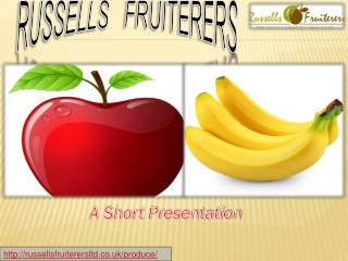 fruit veg suppliers