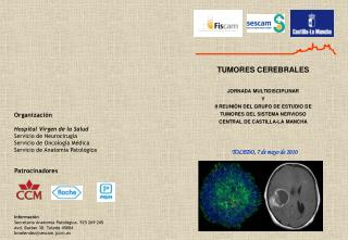 TUMORES CEREBRALES  JORNADA MULTIDISCIPLINAR Y II REUNI N DEL GRUPO DE ESTUDIO DE TUMORES DEL SISTEMA NERVIOSO CENTRAL D