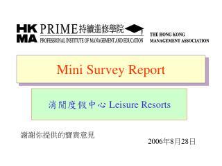 Mini Survey Report