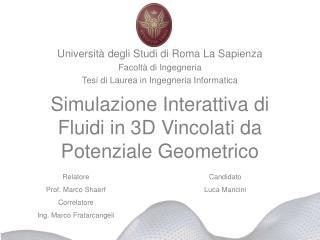 Simulazione Interattiva di Fluidi in 3D Vincolati da Potenziale Geometrico