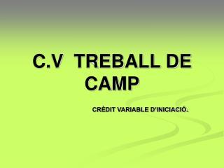 C.V  TREBALL DE CAMP