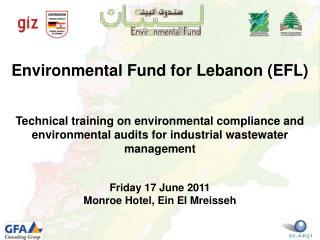 Environmental Fund for Lebanon EFL   Technical training on environmental compliance and environmental audits for industr