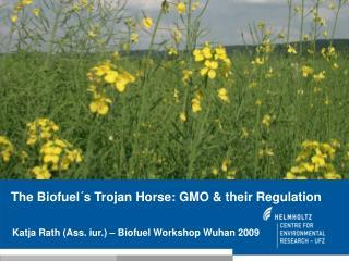 Katja Rath Ass. iur.   Biofuel Workshop Wuhan 2009