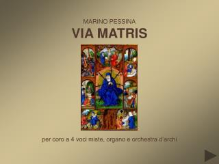 MARINO PESSINA VIA MATRIS