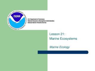 Lesson 21:  Marine Ecosystems  Marine Ecology