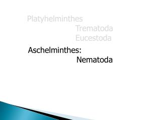 Aschelminthes:              Nematoda