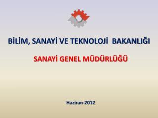 SANAYI GENEL M D RL G         Haziran-2012