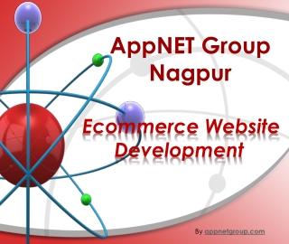 Ecommerce Website Development IT Solution Nagpur