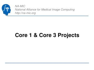 Core 1  Core 3 Projects