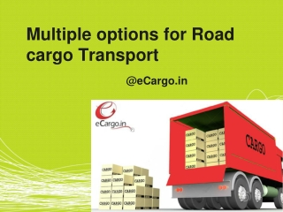 Multiple Options for Road Cargo Transport