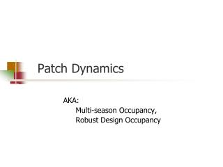 Patch Dynamics