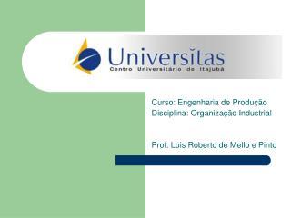 Curso: Engenharia de Produ  o Disciplina: Organiza  o Industrial   Prof. Luis Roberto de Mello e Pinto