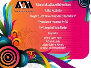 Universidad Aut noma Metropolitana Unidad Xochimilco Energ a y Consumo de Sustancias Fundamentales Tronco Com n division