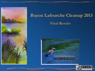 Bayou Lafourche Cleanup 2013