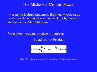 The Michaelis-Menton Model