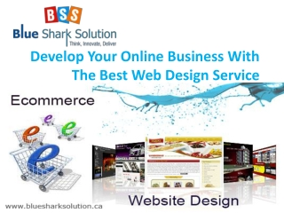 Develop your online business with best web design service