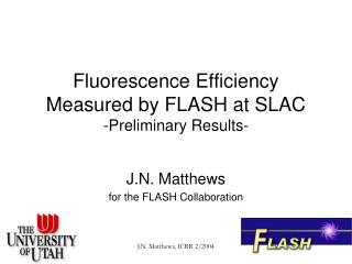 Fluorescence Efficiency Measured by FLASH at SLAC  -Preliminary Results-