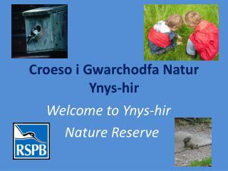 Croeso i Gwarchodfa Natur Ynys-hir