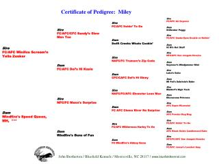 Certificate of Pedigree:  Miley