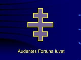 Audentes Fortuna Iuvat