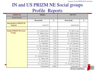 IN and US PRIZM NE Social groups Profile  Reports