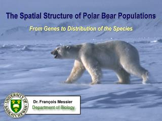 The Spatial Structure of Polar Bear Populations  From Genes to Distribution of the Species