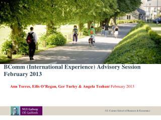 BComm International Experience Advisory Session  February 2013