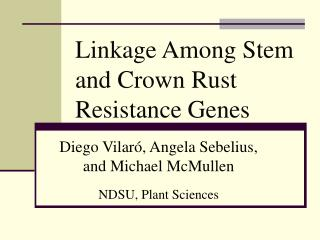 Linkage Among Stem and Crown Rust Resistance Genes