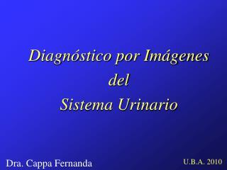 Diagn stico por Im genes del Sistema Urinario
