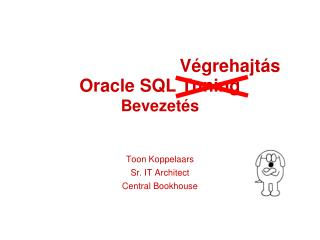 Oracle SQL Tuning Bevezet s