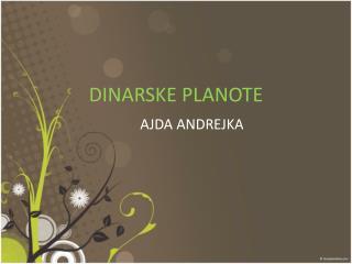 DINARSKE PLANOTE