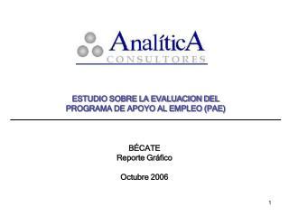 ESTUDIO SOBRE LA EVALUACION DEL  PROGRAMA DE APOYO AL EMPLEO PAE