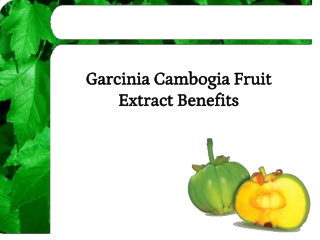 Garcinia Cambogia Fruit Extract Benefits