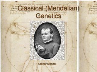Classical Mendelian Genetics