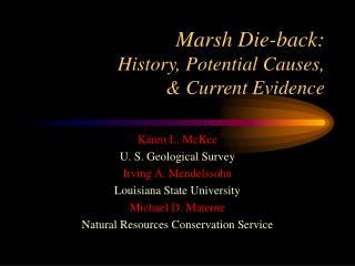 Marsh Die-back:   History, Potential Causes,   Current Evidence